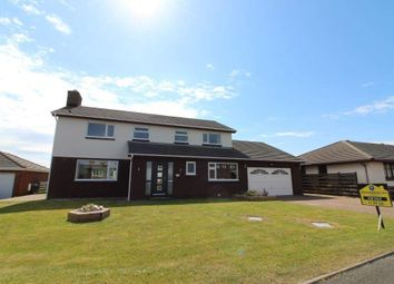 Thumbnail 4 bed detached house for sale in Rhenwyllan Close, Port St. Mary