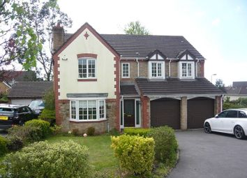 Thumbnail 5 bed detached house to rent in Carreg Erw, Margam, Port Talbot, Neath Port Talbot.