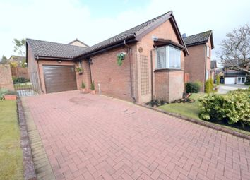 Thumbnail 2 bed detached bungalow for sale in Brent Court, Glasgow