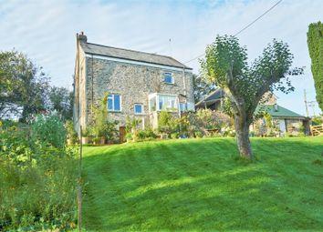Thumbnail 3 bed detached house to rent in Ermington, Ivybridge
