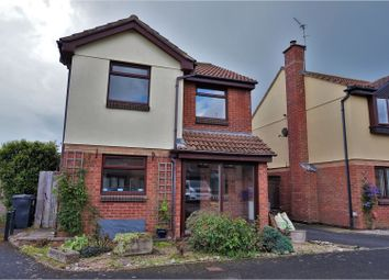 Thumbnail 4 bed detached house for sale in Western Drive, Exeter