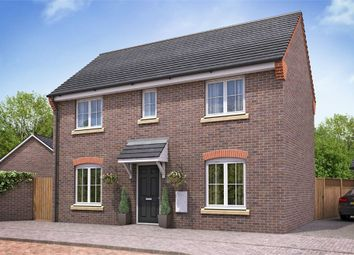 Thumbnail 3 bed detached house for sale in Dragonfly Meadow, Pineham, Northamptonshire