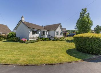 Thumbnail 3 bed detached bungalow for sale in 9 Wandales Lane, Natland