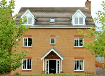 Thumbnail 5 bedroom detached house for sale in Buckthorn Road, Hampton Hargate, Peterborough