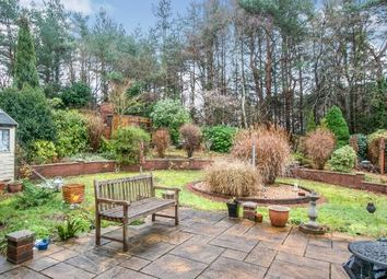 Thumbnail 3 bed bungalow for sale in Conifer Close, St. Leonards, Ringwood