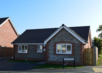 Thumbnail 3 bedroom detached bungalow for sale in Tubby Walk, Lowestoft
