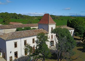 Thumbnail Property for sale in Puisserguier, Aude, France