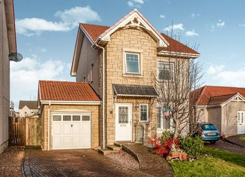Thumbnail 3 bed detached house for sale in Teal Place, Montrose