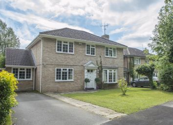 Thumbnail 5 bedroom detached house for sale in Hocketts Close, Whitchurch Hill, Reading