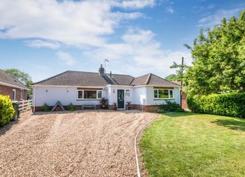 Thumbnail 4 bed bungalow for sale in Old Basing, Basingstoke, Hampshire
