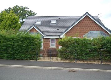 Thumbnail 4 bed bungalow for sale in The Hawthorns, Preston
