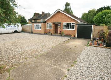 Thumbnail 4 bedroom detached bungalow for sale in Gardenfields, Stanford Rivers