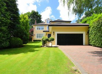 Thumbnail 5 bed property to rent in Henley Drive, Coombe