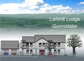 Thumbnail 4 bed detached house for sale in Delaware Road, Gunnislake