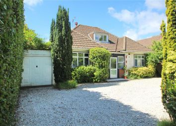 Thumbnail 4 bed detached bungalow for sale in Offington Lane, Worthing, West Sussex