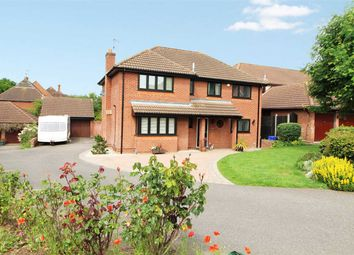 Thumbnail 5 bed detached house for sale in Thistledown, Highwoods, Colchester