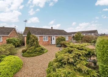Thumbnail 3 bed detached bungalow for sale in Old Yarmouth Road, Sutton, Norwich