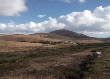 Thumbnail Land for sale in Tiscamanita, Fuerteventura, Spain