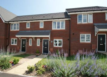 Thumbnail 3 bed terraced house for sale in Wilkins Drive, Paignton