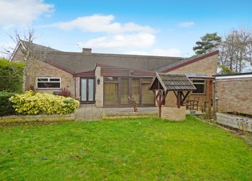 Thumbnail 5 bed detached bungalow for sale in Cedar Drive, Loddon, Norwich