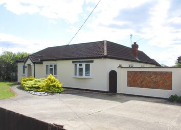 Thumbnail 3 bed detached bungalow to rent in Wellington Avenue, Hullbridge, Hockley