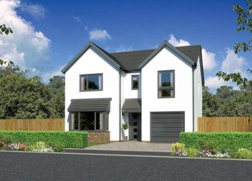 "Thumbnail 4 bed detached house for sale in ""Hampsfield"" at Countesswells Park Place, Countesswells, Aberdeen"