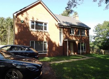 Thumbnail 5 bed detached house to rent in Eden, St. Mary Park, Morpeth