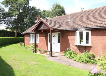Thumbnail 3 bed detached bungalow for sale in Brampton Abbotts - Rural, Thistledown, Ross-On-Wye