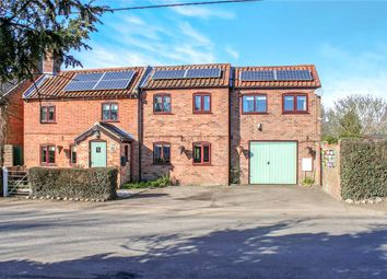 Thumbnail 4 bed detached house for sale in Seething Street, Seething, Norwich, Norfolk