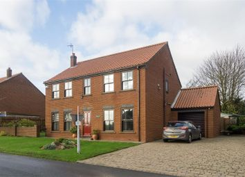 Thumbnail 4 bed detached house for sale in Pinfold Lane, Roos, Hull