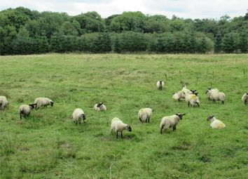 Thumbnail Land for sale in 4.17 Acres Of Pasture And Woodland, (Formerly Part Of Manorowen House), Manorowen, Fishguard, Pembrokeshire