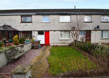 Thumbnail 3 bed property to rent in 3 Glendoe Terrace, Inverness. 8EE