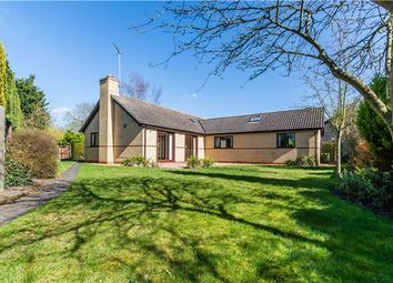 Thumbnail 4 bedroom detached bungalow for sale in Wellington Close, Waterbeach, Cambridge