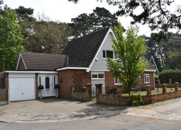 Thumbnail 4 bed detached house for sale in Priory Close, St. Olaves, Great Yarmouth