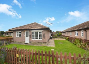 2 bed bungalow for sale in Hazel Grove, Minster, Sheerness ME12