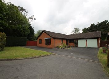 Thumbnail 2 bed detached bungalow to rent in Berkeswell Close, Redditch