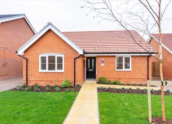 Thumbnail 2 bed bungalow for sale in The Westerfield, Holbrook, Ipswich