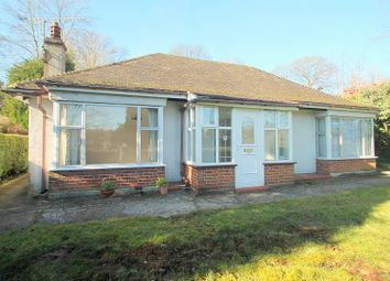 Thumbnail 3 bed detached bungalow to rent in Hornchurch Hill, Whyteleafe