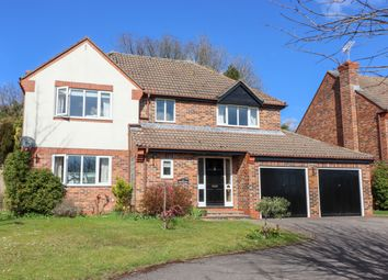 Thumbnail 4 bed detached house for sale in Orchard Close, Alresford