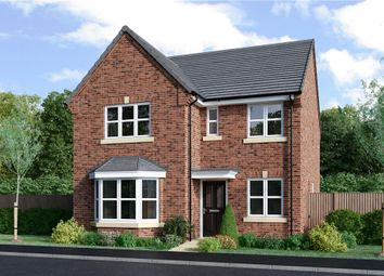 """Thumbnail 4 bed detached house for sale in """"Mitford"""" at Milby, Boroughbridge, York"""