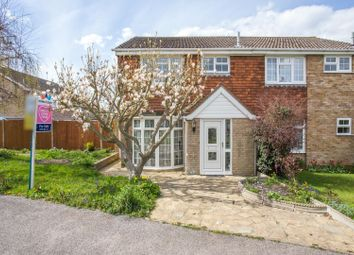 Laxton Way, Faversham ME13. 3 bed semi-detached house for sale