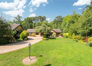 Thumbnail 4 bed detached bungalow for sale in Manor Farm Lane, Michelmersh, Romsey, Hampshire