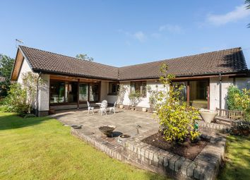 Thumbnail 4 bed detached bungalow for sale in 180B Whitehouse Road, Edinburgh