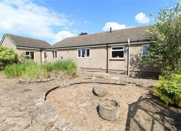Thumbnail 4 bedroom detached bungalow for sale in Sleagill, Penrith, Cumbria