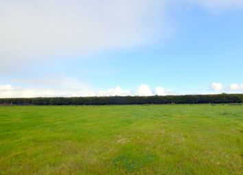 Thumbnail Land for sale in Building Plot, Strathview, Watten