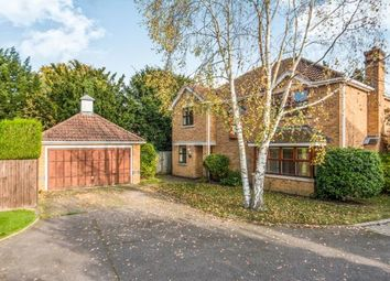Thumbnail 4 bedroom detached house for sale in Cobham, Surrey