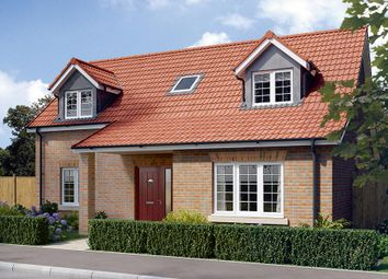 "Thumbnail 3 bed property for sale in ""The Canterbury"" at Derwent Close, Stamford Bridge, York"