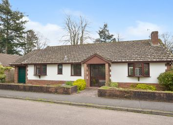 Thumbnail 3 bedroom bungalow for sale in Denewood Copse, West Moors, Ferndown, Dorset