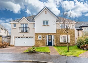 Thumbnail 5 bed detached house for sale in Young Crescent, Larbert, Stirlingshire