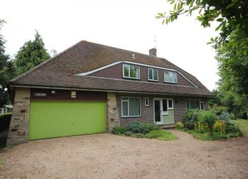 Thumbnail 4 bed detached house to rent in Wrights Green, Lt Hallingbury, Herts